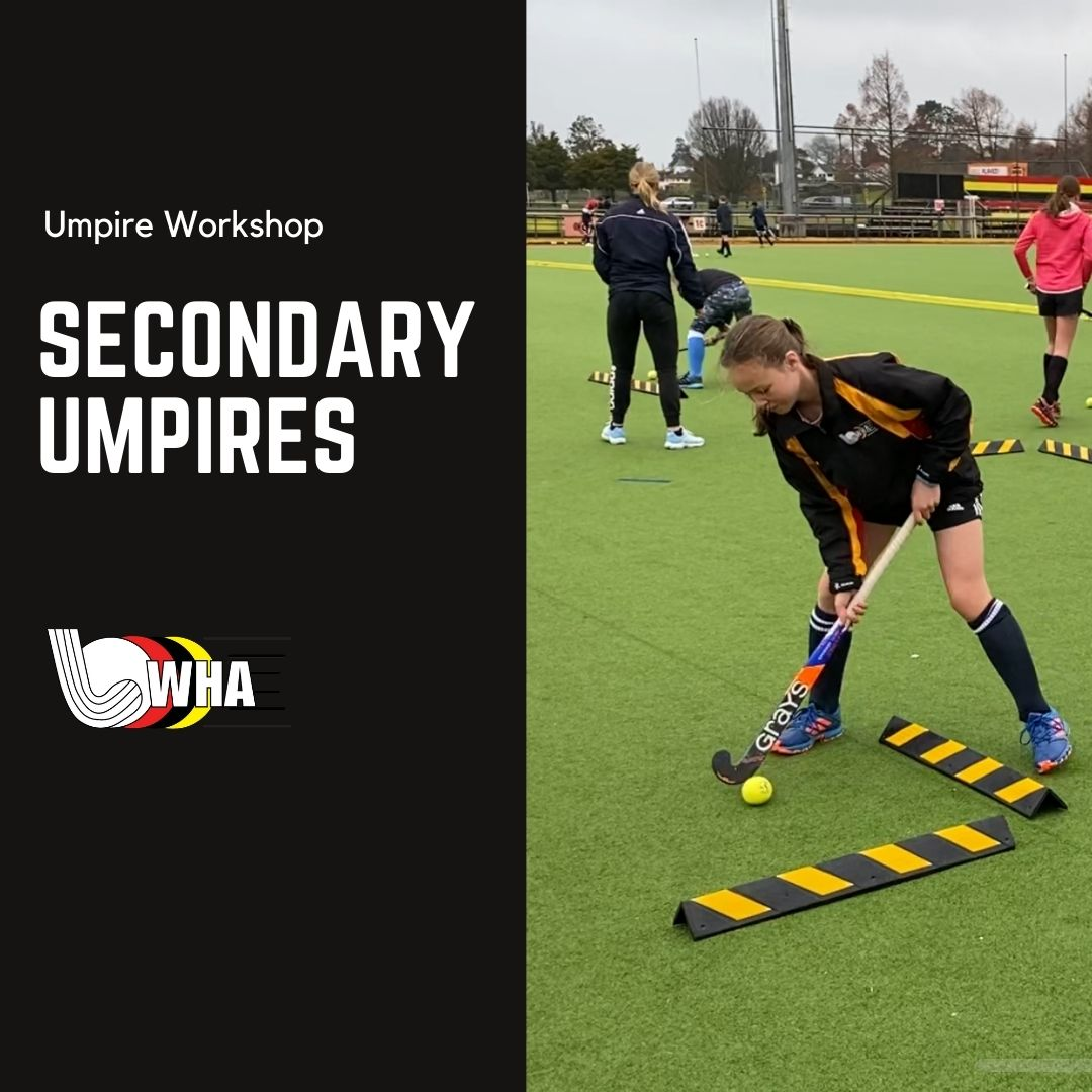 Secondary Umpire Workshop
