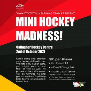 Mini Hockey Madness Fundraiser